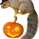 Witch Squirrel with Jack-o-Lantern by catsclips