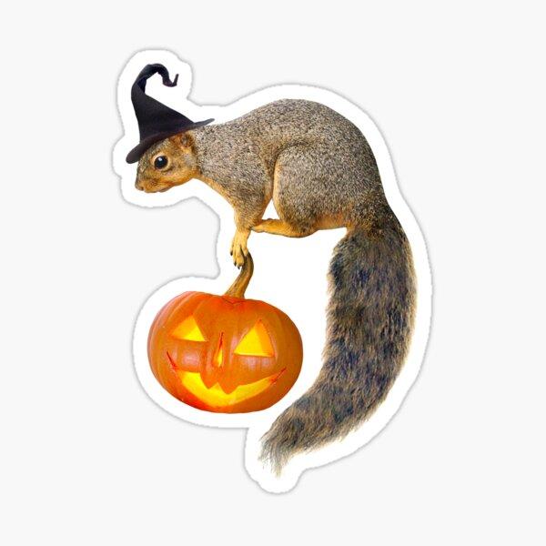 Witch Squirrel with Jack-o-Lantern Sticker