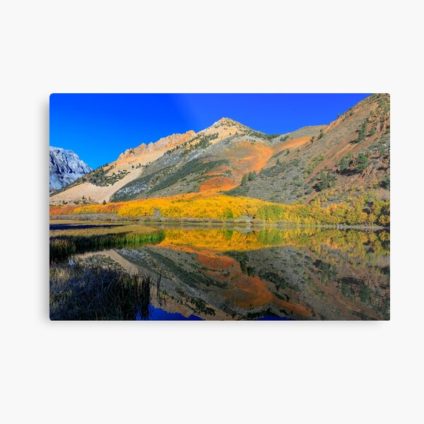 Bishop North Lake Technicolor Fall Metal Print
