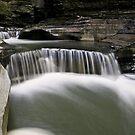 Watkins Glen by Jeff Palm Photography