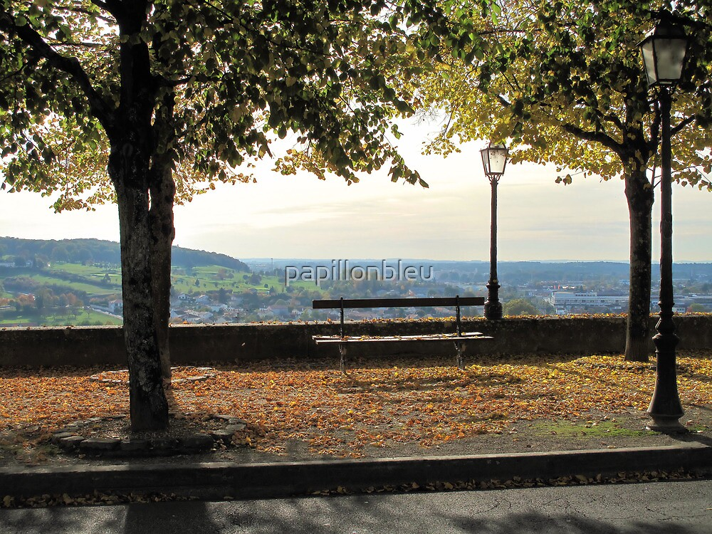 Bench with a View by Pamela Jayne Smith