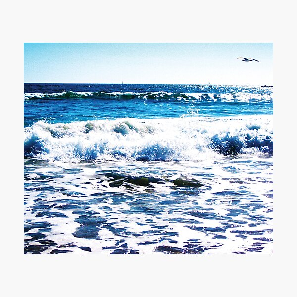 One Solitary Seagull at the Ocean by Jerald Simon (Music Motivation - musicmotivation.com) Photographic Print