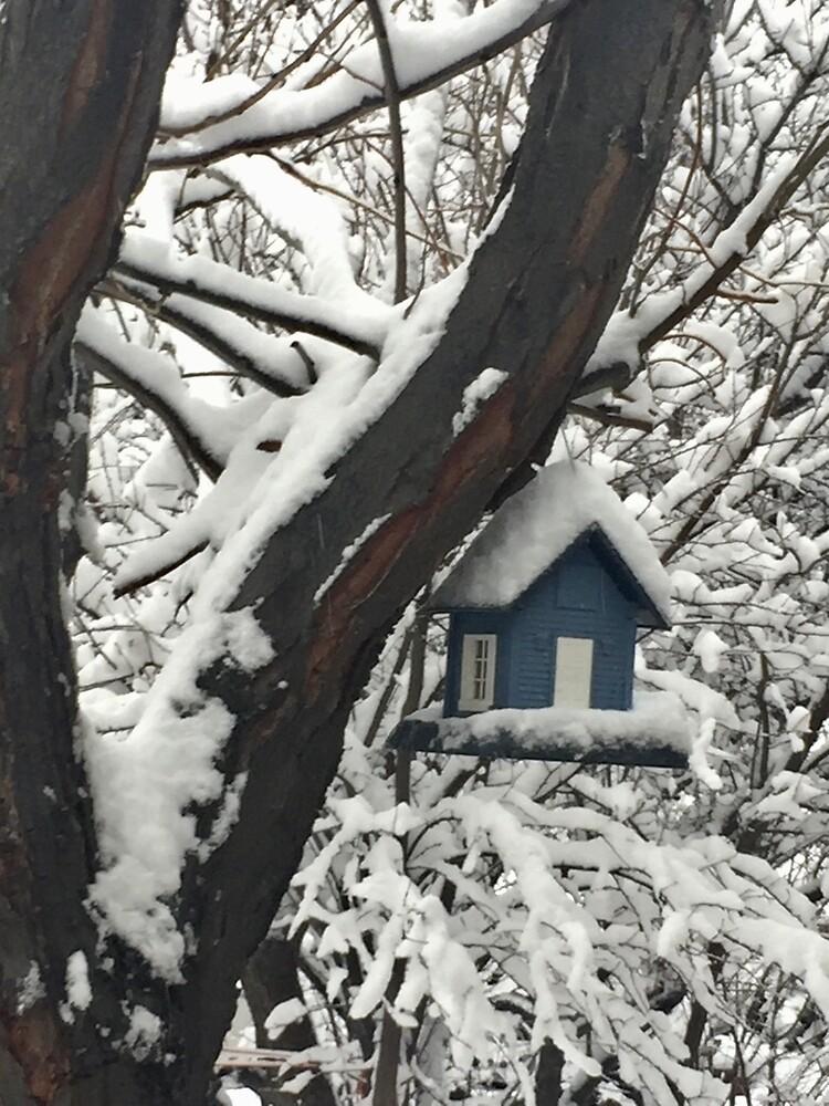 Snow Covered Bird House by EricaRobbin