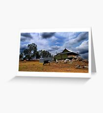 Farm stay - Bunyip Springs Farm Greeting Card