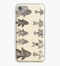 The fishes of India by Francis Day 015 - Apogon Multiplaeniatus, A Kalasoma, A Nigricans, A Frenatus, A Savayensis, A Nigripinnis, A Enderataenia, A Aureus, A Bifasciatus, A Galaga iPhone Case/Skin