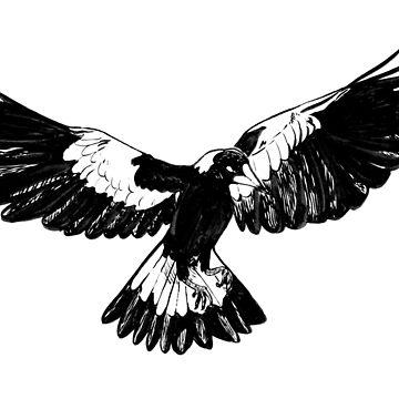 Magpie in Flight by srw110