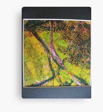 Rivers Canvas Print