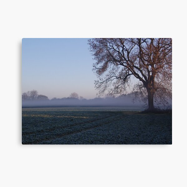 Morning mist over frost covered field Canvas Print