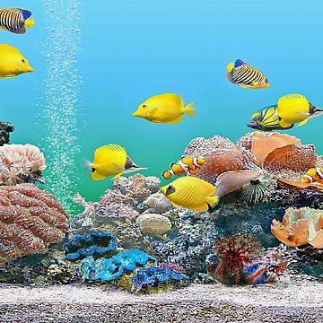 Yellow fish by missmoneypenny