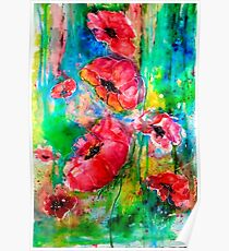 Poppies by Karen Veal Poster
