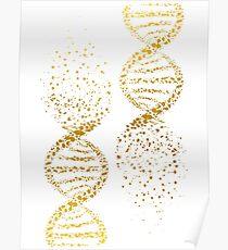 DNA-Doppelhelix-Genetik Poster