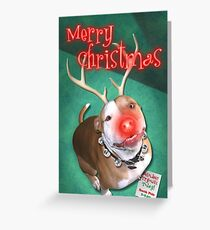 Boodolph - The Red-Nosed Pit Bull Greeting Card