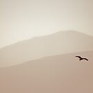 Flight by Kory Trapane