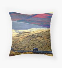 Carpeted Throw Pillow