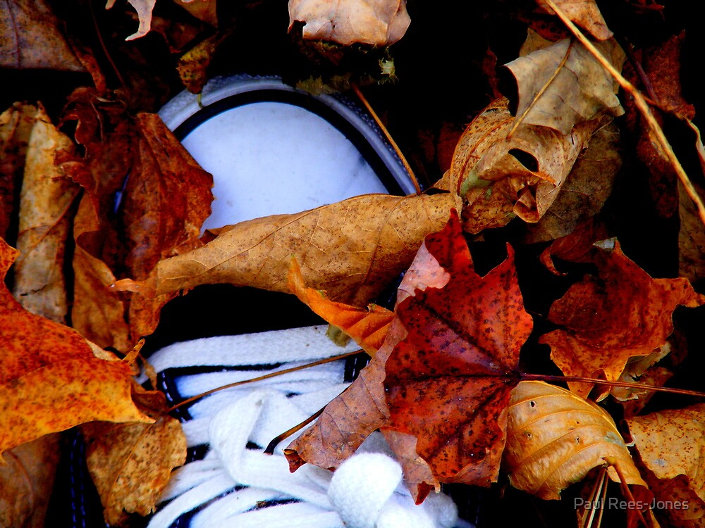 ...and he was buried under a blanket of fall... by Paul Rees-Jones