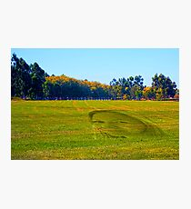 woman's face in the grass Photographic Print