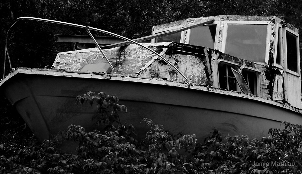 Missing a Captain by Jamie Mathiau