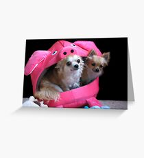 Two dogs in a pig. Greeting Card