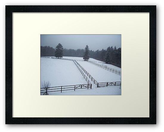 Horse Paddocks in winter, Bad Homburg by Lael Woodham