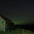 The  last  of the  Aurora by Alexander Mcrobbie-Munro