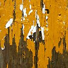 Once Clothed in White, then Yellow Ochre by Wayne Gerard Trotman