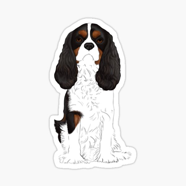 Cavalier King Charles Spaniel Tri-Color Sticker