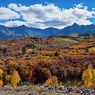 Colorado Color Lalapalooza by Bo Insogna