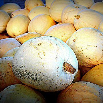 White Pumpkins by Cynthia48