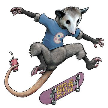 Awesomest Possum by joshbillings