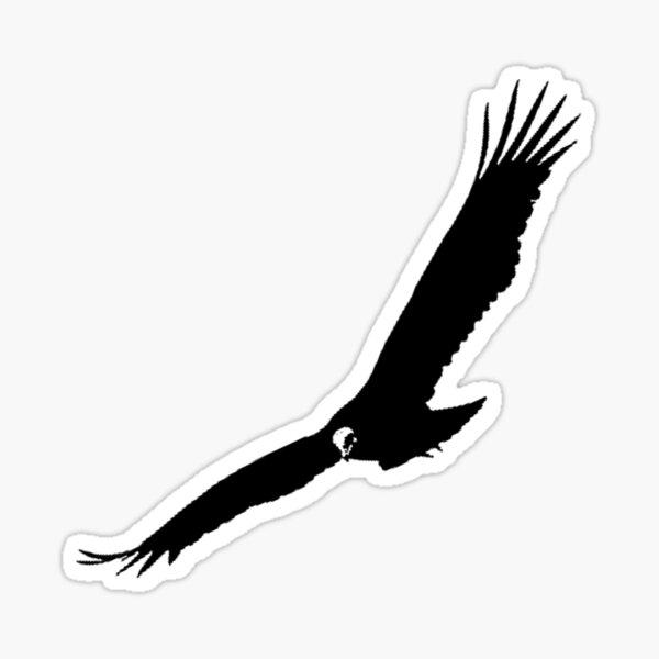 Vulture Sticker - IV Sticker