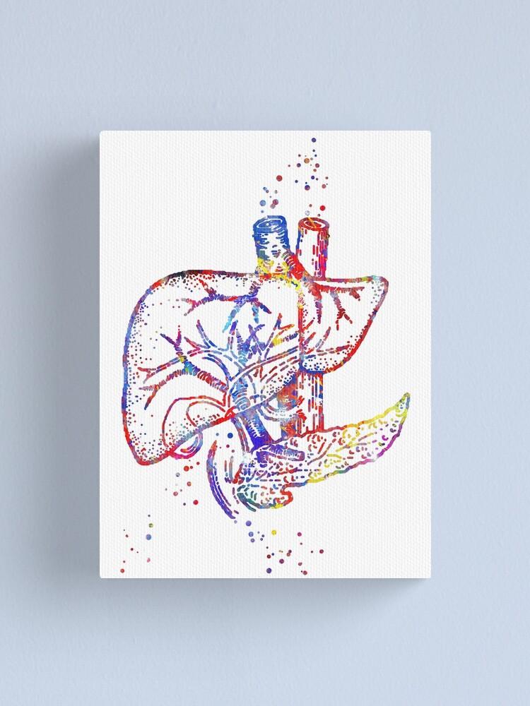 DNA Human Watercolor CANVAS print dna art Doctor Nurse Gift Medical Art Clinic