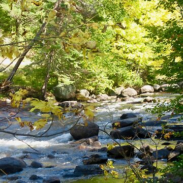 Rushing River  by Shulie1