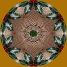Holly Star..Kaleidoscope by judygal