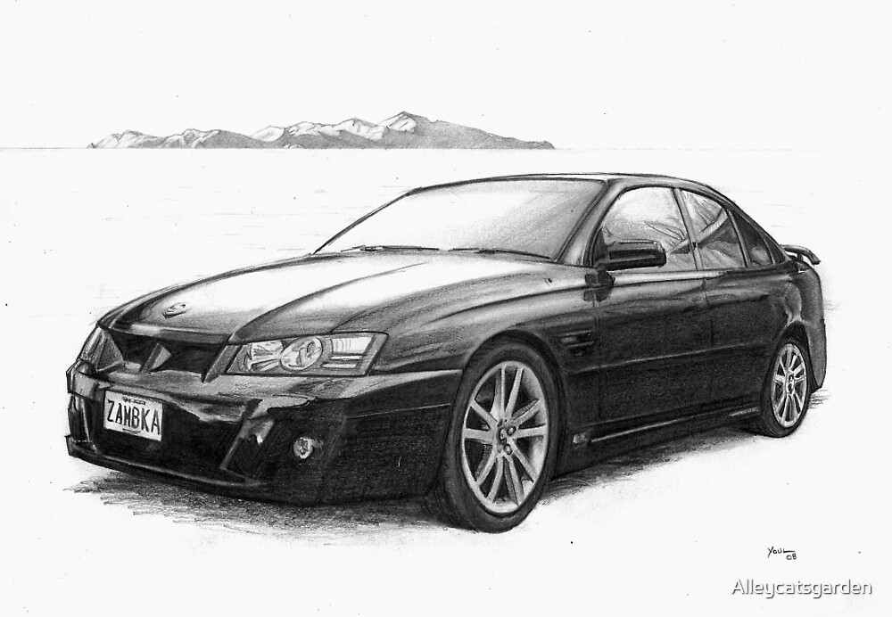 Holden HSV with Kapiti Island by Alleycatsgarden