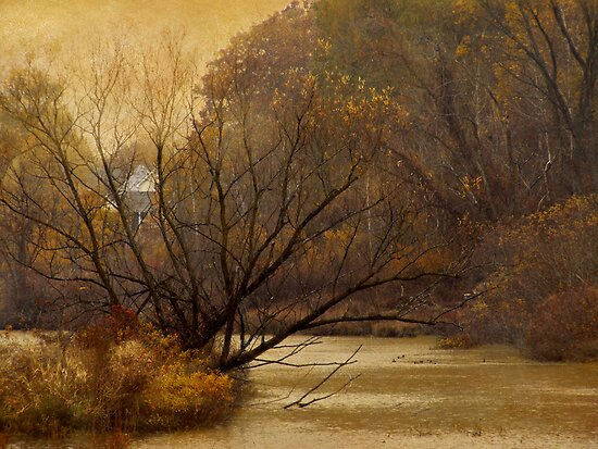 Autumn on the River by enchantedImages