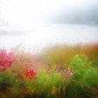 Autumn Fog On Eagle Lake by Anita Pollak
