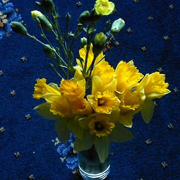 Echos of Spring - A Bunch of Golden Daffodils by kathrynsgallery