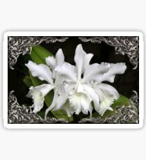 Elegant Orchids ~ Cluster of Three Sticker