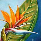 Bird of paradise  by Picatso