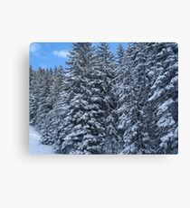Snowy Trees in Austria Canvas Print