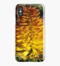 Chives Flower in Full Bloom iPhone Case/Skin