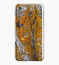 Horse's Head Vision iPhone Case/Skin