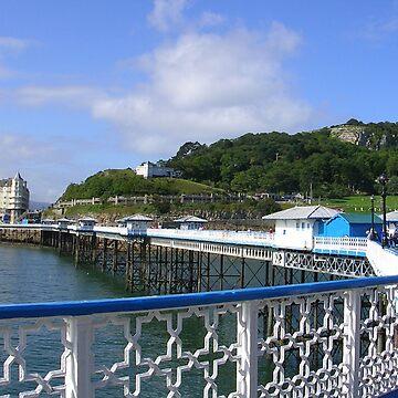 Pier at Llandudno, North Wales by lezvee