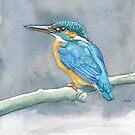 Kingfisher by Liz Mattison