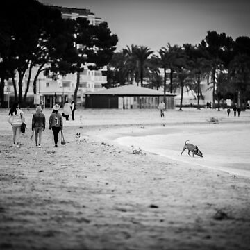 Friends on the beach – BW by lesslinear
