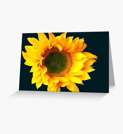 Sunny Sunflower 2 Greeting Card