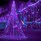 A Fascinating 75% Purple ❤️  (Purple MAIN feature)