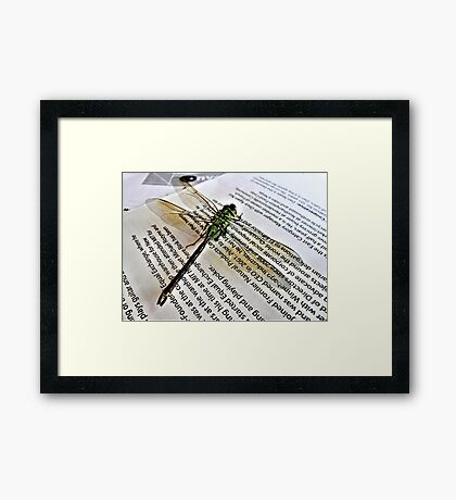 A Scholarly Dragonfly Framed Print