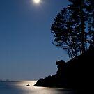 Moon over coromandel by Paul Mercer