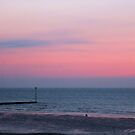 Jetty in pink by chihuahuashower